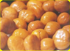 http://www.gingerking.com/foodstuff/chestnut.files/meat%20chestnut.jpg